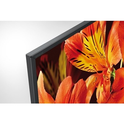 TV LED Smart 4K UHD Sony 49XF8596B